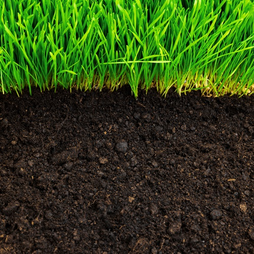 Healthy lawn soil tips advice winlawn lawn care guide for Lawn topsoil